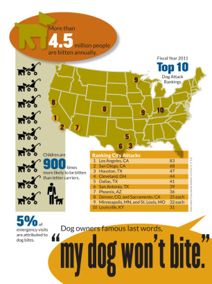 Dog Bite InfoGraphic